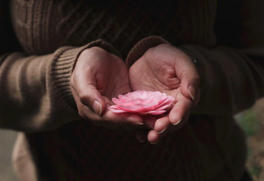 Eine pink-fabende Blüte liegt in den Handflächen einer Frau
